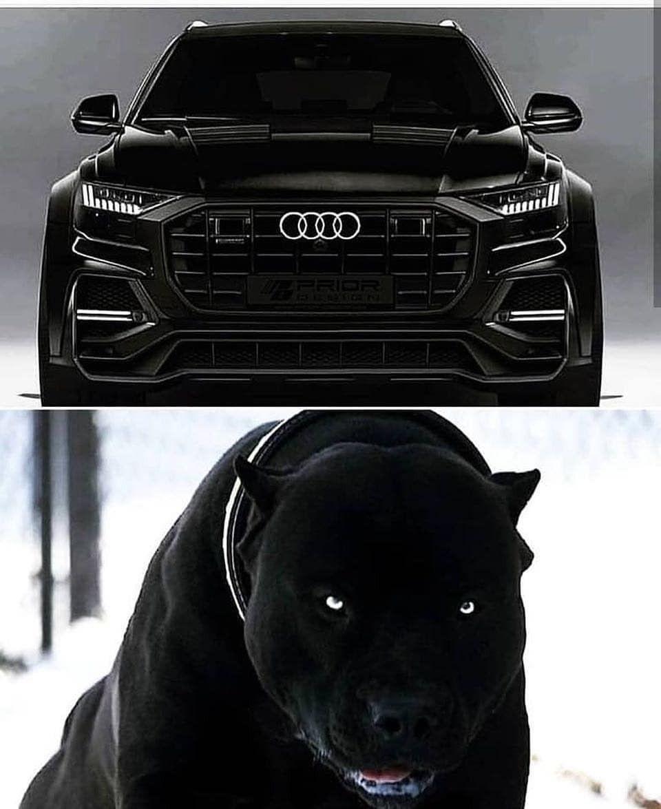 Cars, Motor Car, Super Cars
