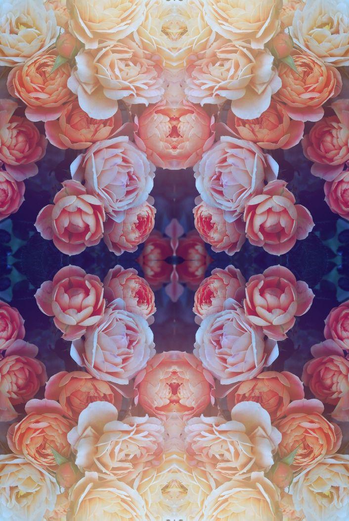 floral print mirror image foldie art design colour burnt out ...