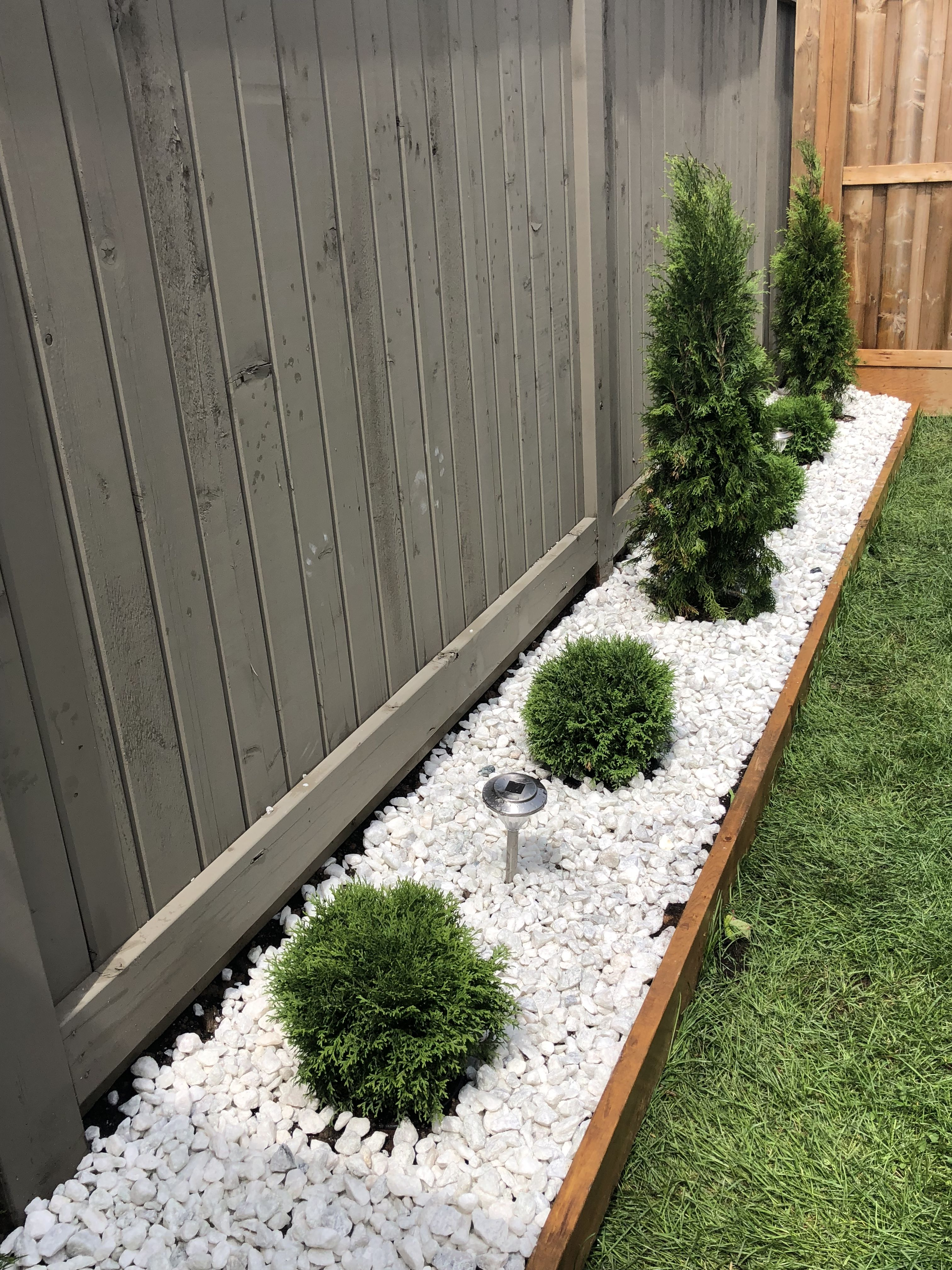 White Stone Garden With Little Giant Globe Cedars And Emerald
