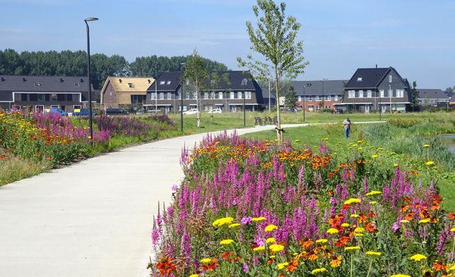 Loos Van Vliet Linear Park Blaricummermeent Linear Park Landscape Architecture Landscape