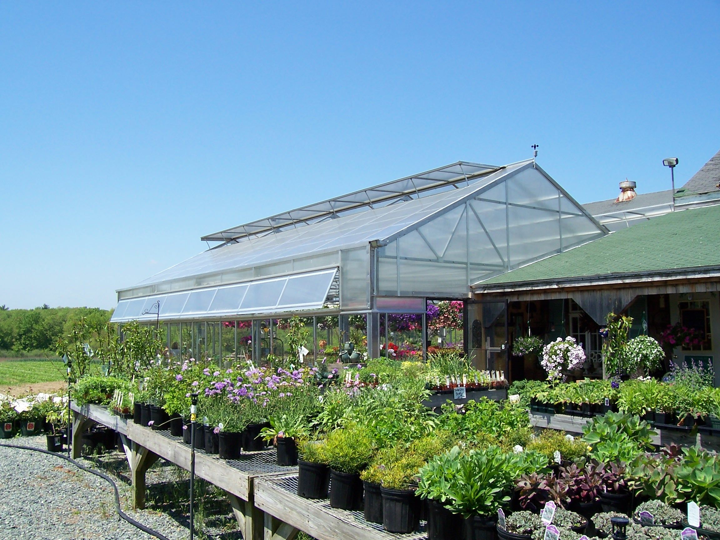 set your sights on serious growth this spring with a rimol greenhouse system - Rimol Greenhouse Of Photos