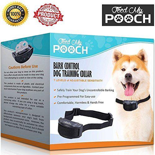 Pin By Jane Fondi On Dog Training Dog Training Dog Shock Collar