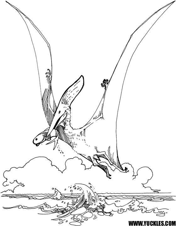 Read Morekids Flying Dinosaurs Coloring Pages Dinosaur Coloring