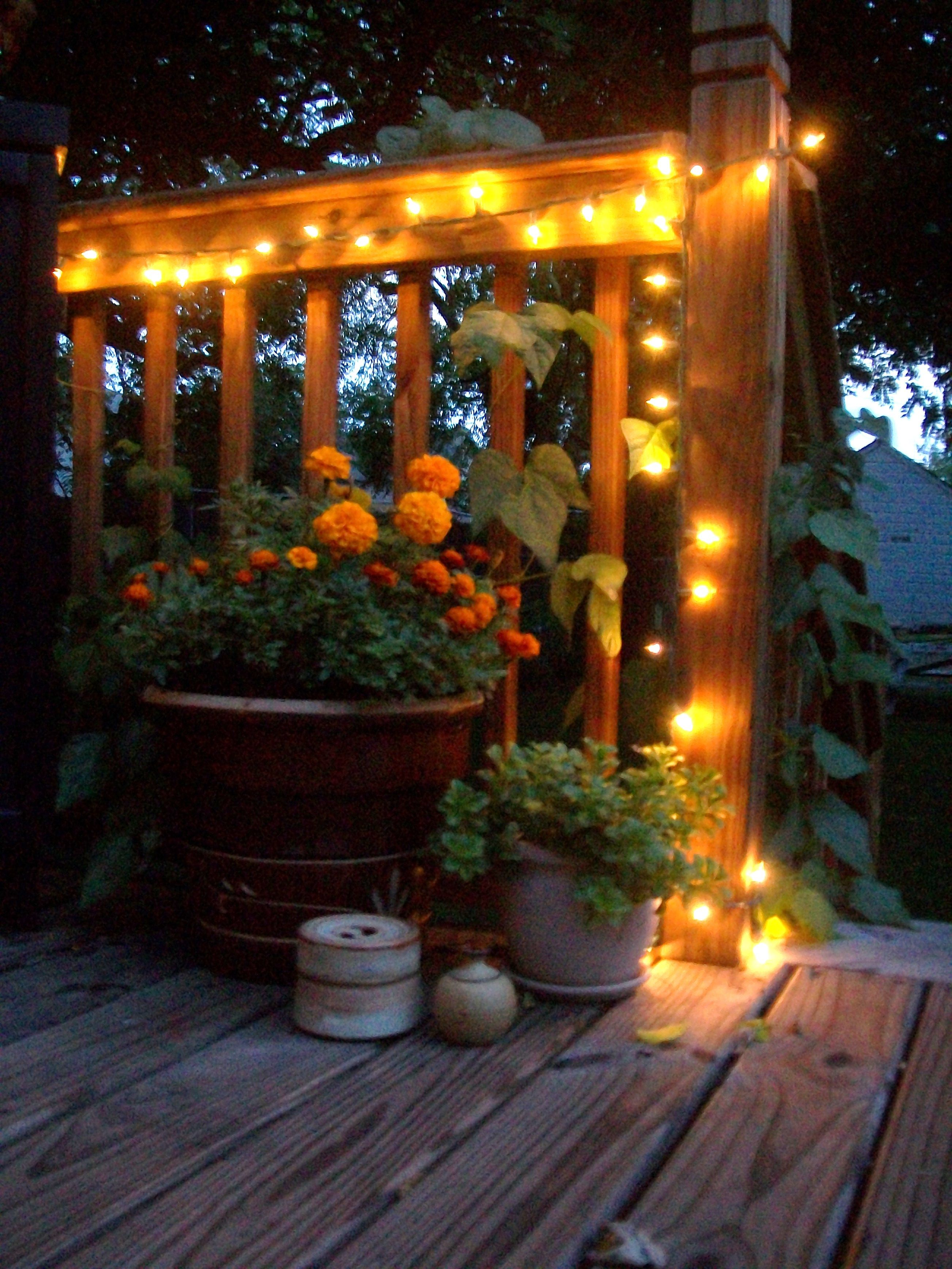 Little lights thinking of putting these under the deck
