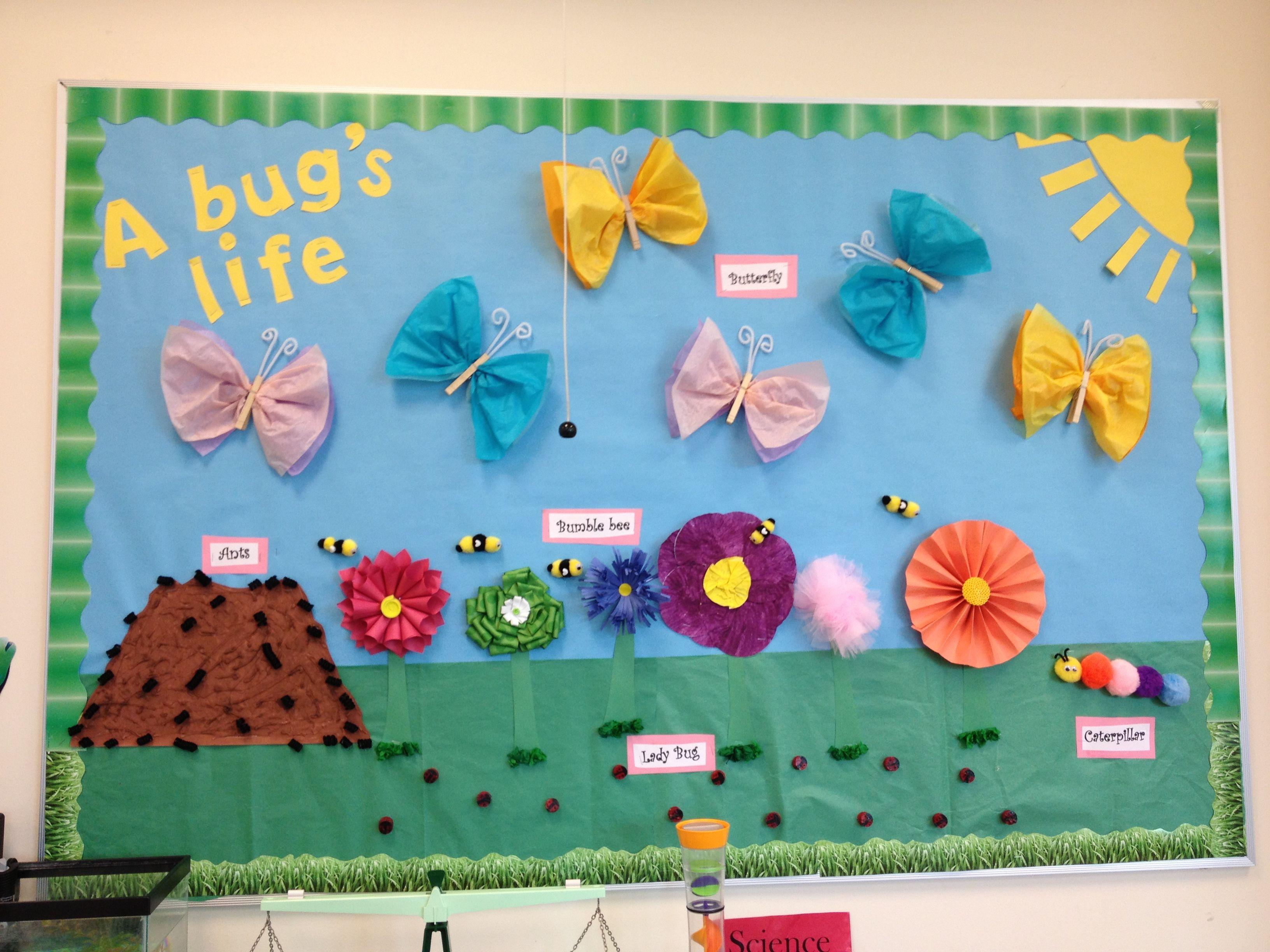 Bulletin board about bugs   Preschool   Pinterest ...