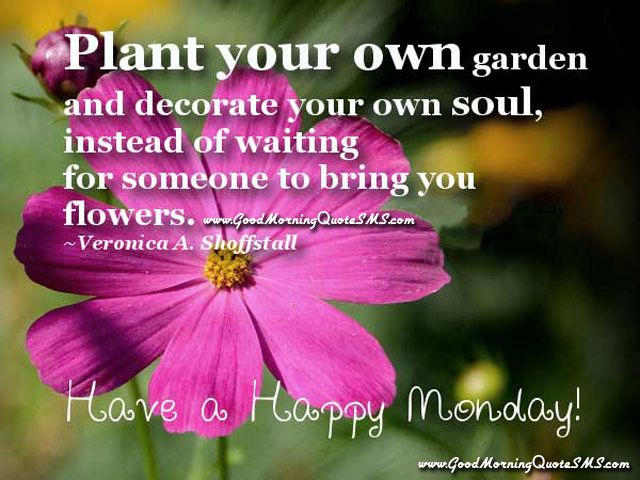 good morning monday inspirational quotes happy monday