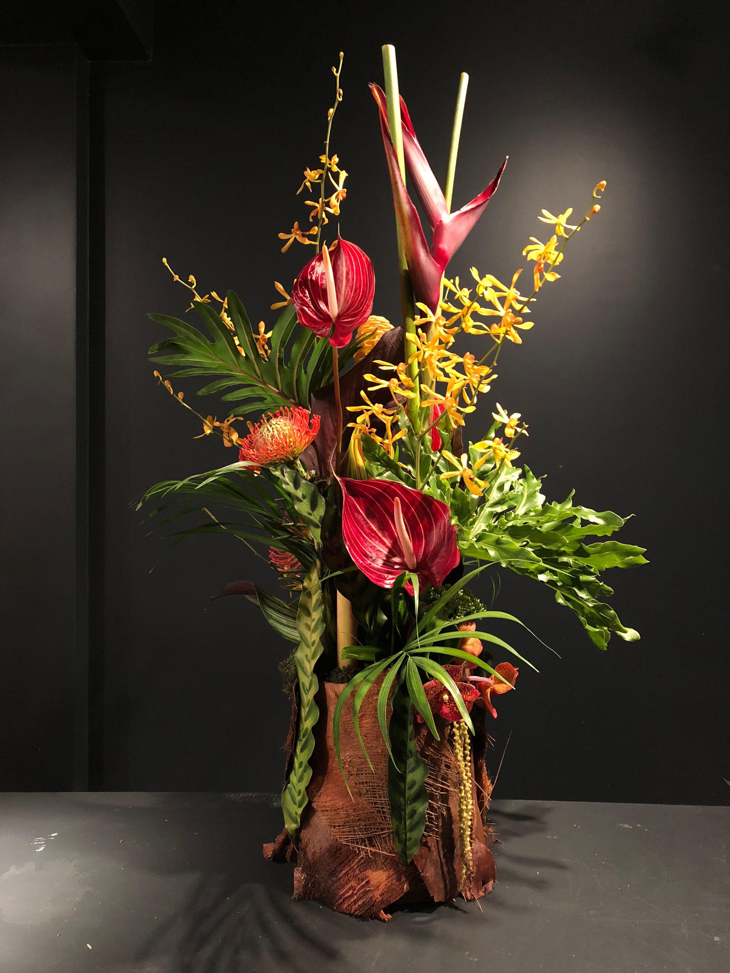 Fleurs Exotiques La Martinique Boya Flowers Home Decor