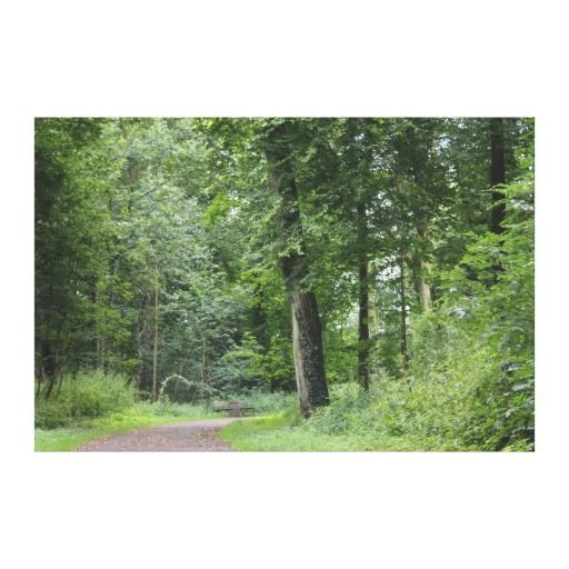 Lush Green Forest Gallery Wrap Canvas 50% Off Wrapped Canvas    TODAY ONLY! #zazzle Code: PERFECTZGIFT