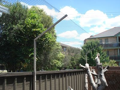 cat mesh fencing