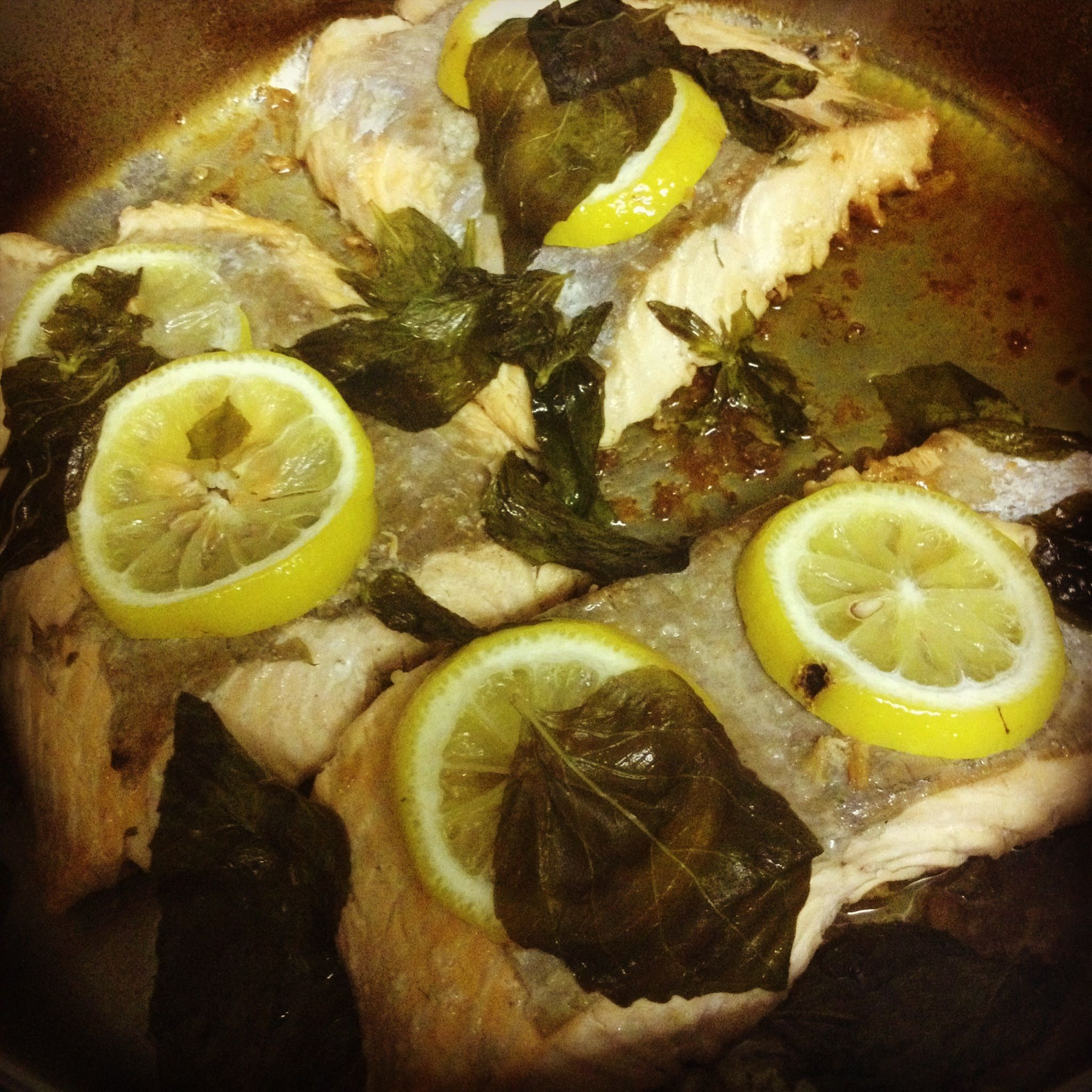 Seared oven baked salmon with lemon and basil