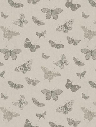 arboreta butterfly