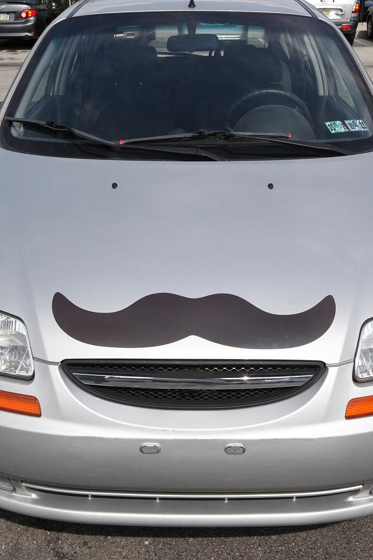 Places id like to go in a ford focus with a mustache