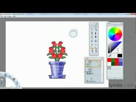 How To Use The Sketchbook Pro Color Tools Lynda Com Tutorial