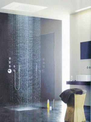 Dornbracht Rain Shower.