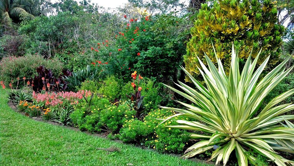 Mounts Botanical Garden West Palm Beach Florida West Palm Beach Florida Palm Beach Florida West Palm