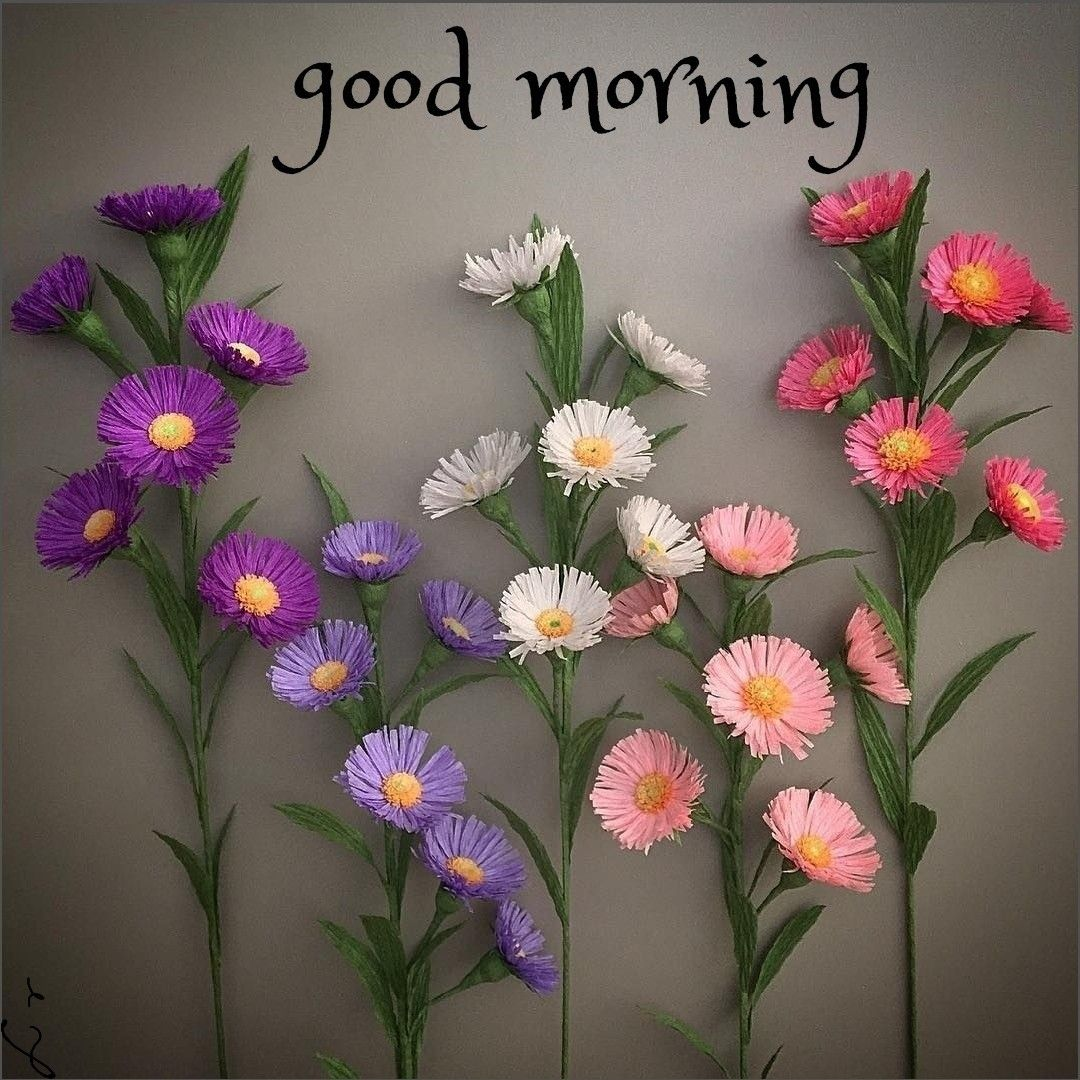 Pin By ประสงค ข นทอง On Morning Wishes In 2020 Good Morning Flowers Good Morning Roses Good Morning Beautiful Flowers