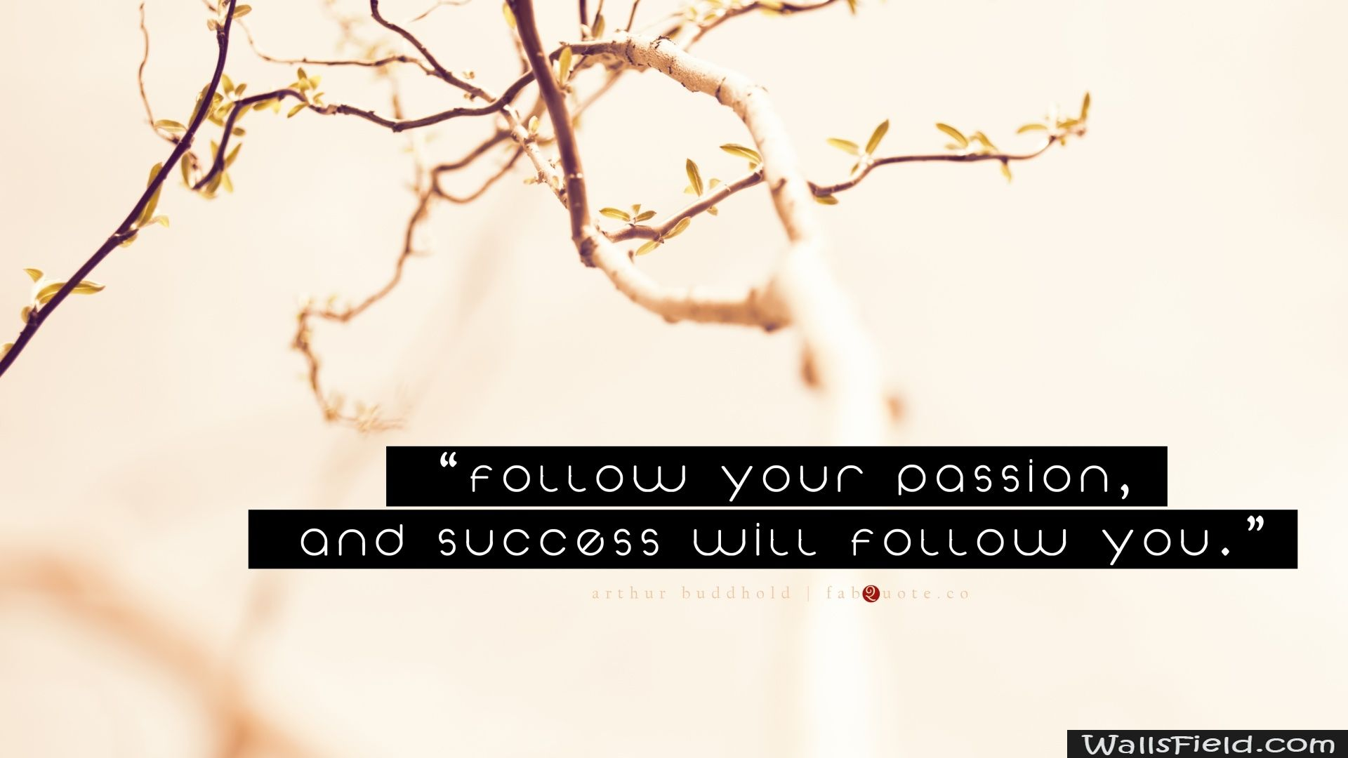 Pin On Quotes Wallpapers