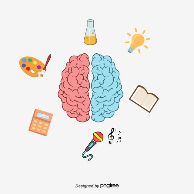 Wektor Mózg Uczy Się Ikony, Wektor, Mózg, Uczyć Się PNG i
