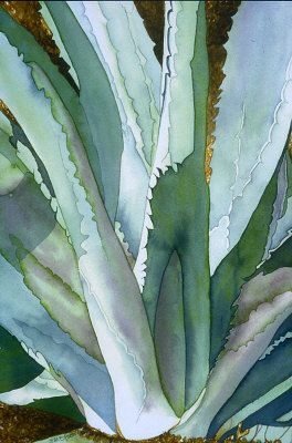 Agave 1 Eunice Olson Original Medium Watercolor Eunice M Olson
