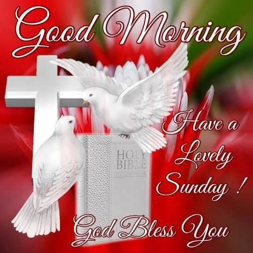 Good Morning, Have A Lovely Sunday. God Bless You,