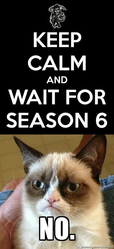 Grumpy Is Tired Of Waiting For Season Six Funny Grumpy Cat Memes Grumpy Cat Humor Grumpy Cat