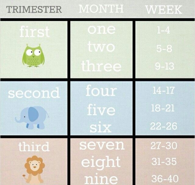Babylist trimester month week conversion chart    weeks and days today almost months already also  greytone with first second third rh pinterest