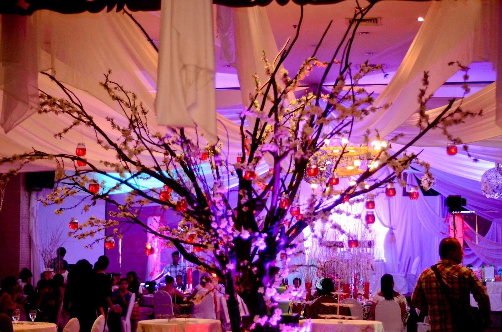 Wedding decorations trees with lights  cherry blossom tree centerpieces images  Google Search  Wedding