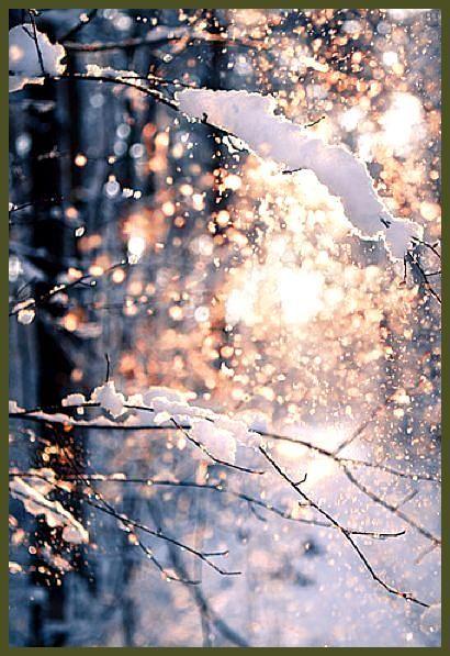 winter weihnachten #weihnachten Schnee und Sonne im Zusammenspiel ergeben ein ha…