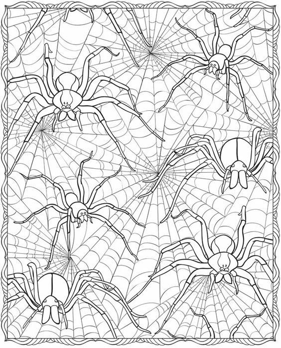 Spiders In Web Printable Spider Coloring Page Fall Coloring Pages Halloween Coloring