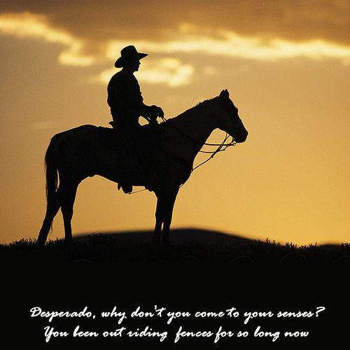 Desperado | Cowboy horse, Horse silhouette, Cowboys