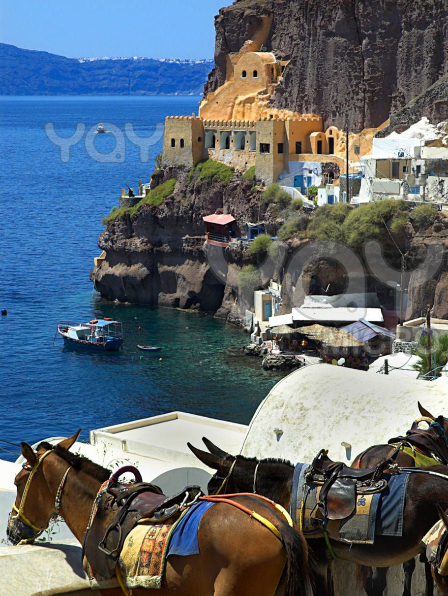 Donkeys taking a rest in the heat of the day on Santorini