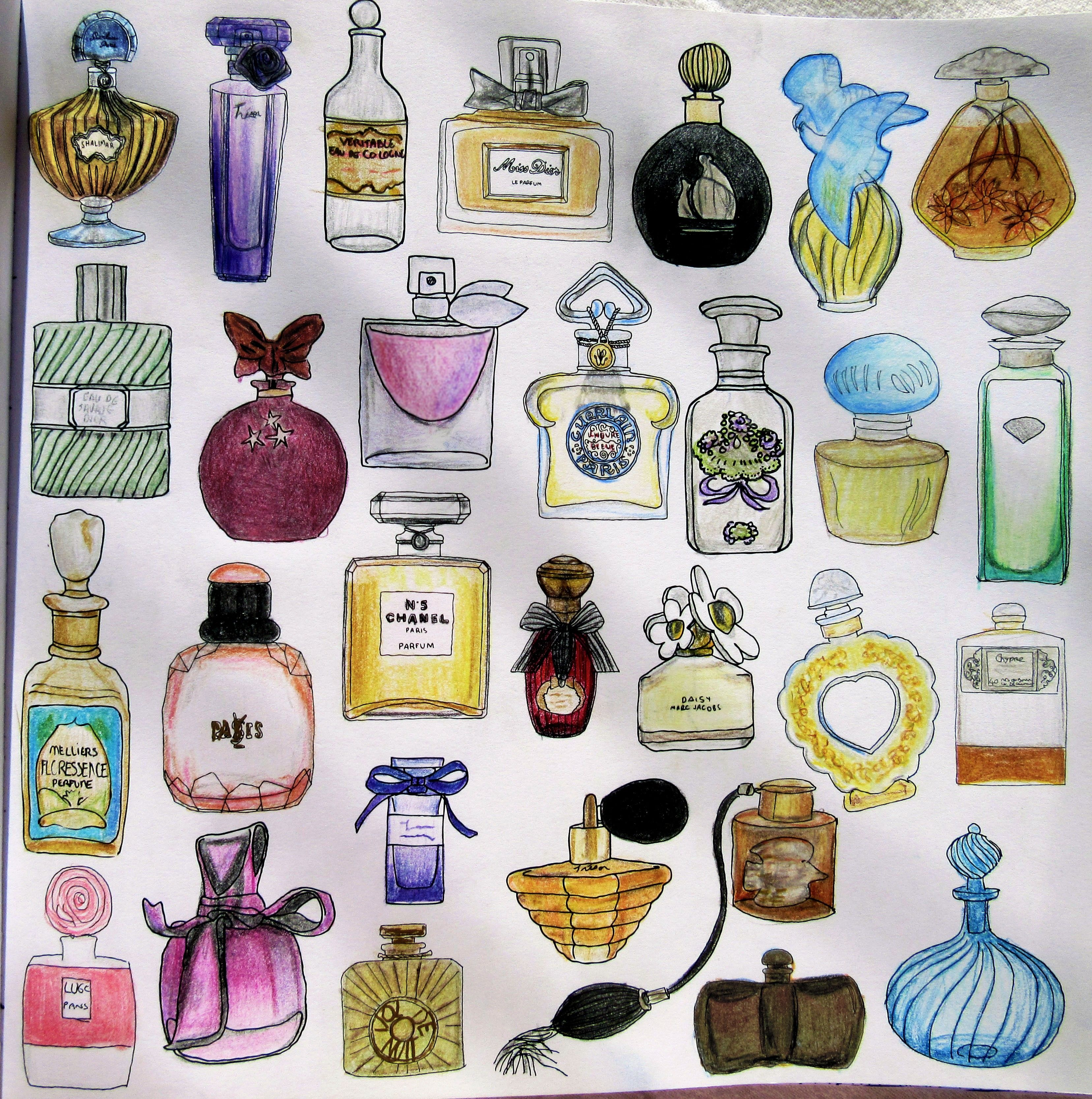Zoe De Las Cases Secret Paris Colouring Book Perfumes By Michelle