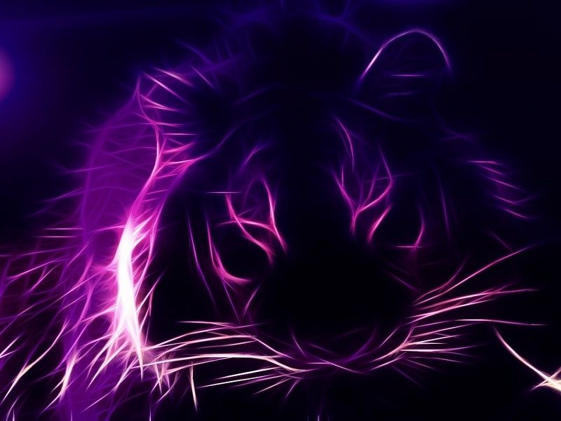 Fractal Tiger HD Wallpaper On MobDecor Mobdecor