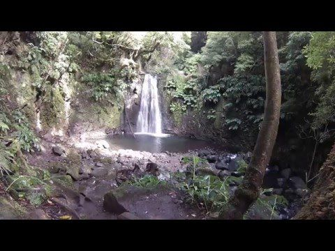 Trilho Pedestre do Sanguinho - Amazing Azores - Hiking trails - Nature - Trilhos…