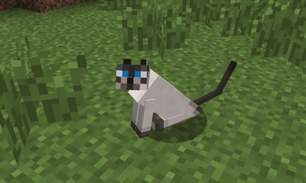 Minecraft Ocelot Minecraft Kocka Ocelot 12w05b Minecraft Mayhem