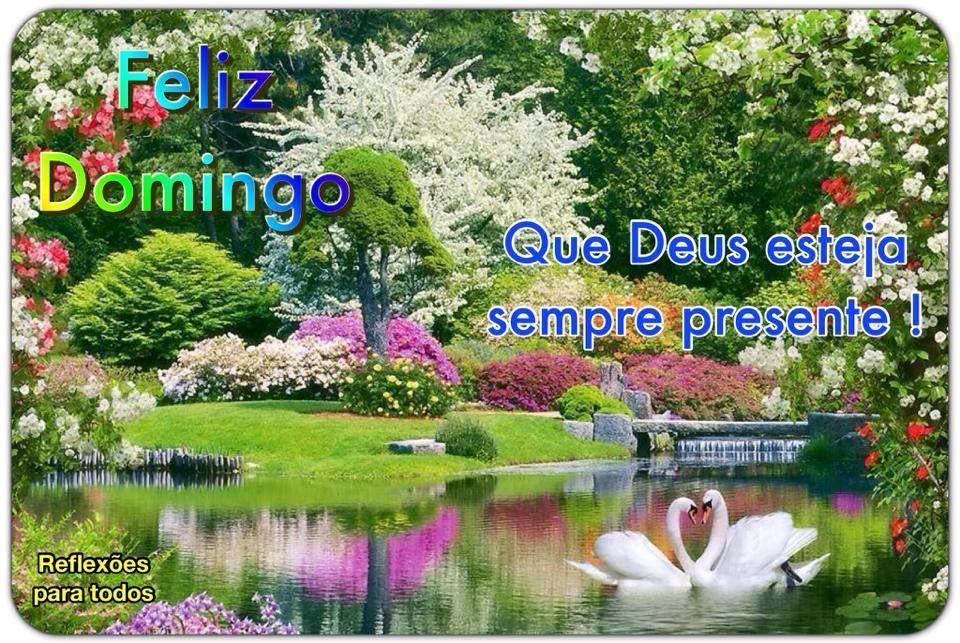 Bom Dia Iluminado E Abençoado Por Deus: ️ Bom Dia! Domingo Abençoado Por Deus! Visite Nosso Blog