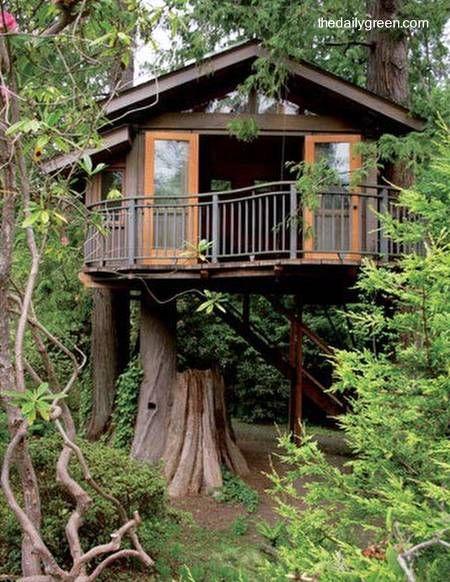 Casa tipo cabaña en un árbol Casas de arbol Pinterest El arbol - casas en arboles