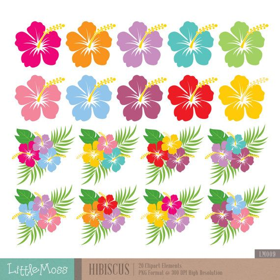 picture regarding Printable Hawaiian Flowers named Hibiscus Electronic Clipart, Hawaiian Flower Clipart Items