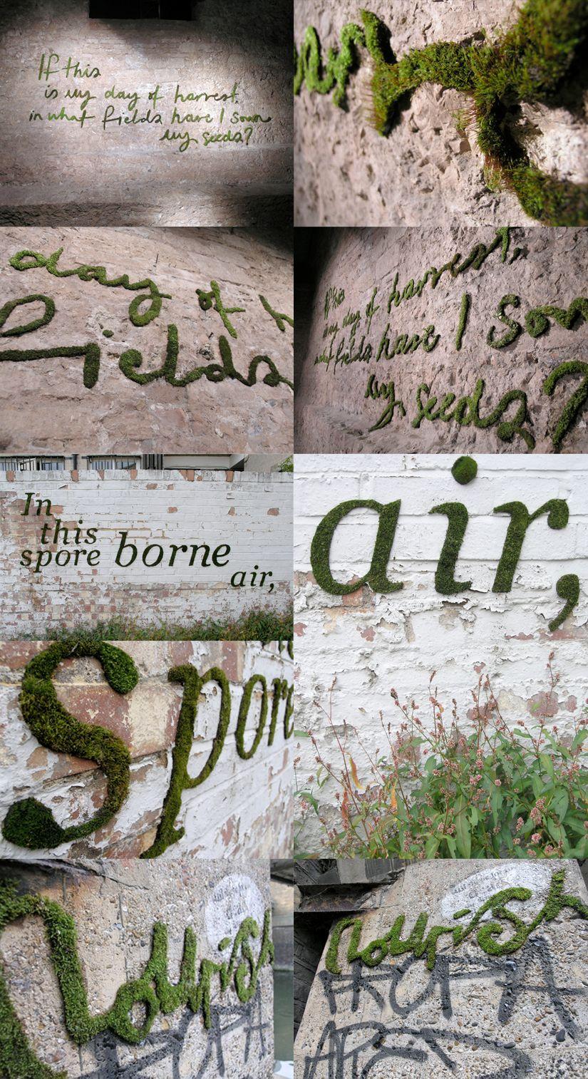 1000  images about garden * afscheiding & wanden on pinterest ...