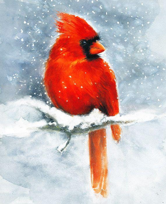 Cardinal Watercolor Art Print  Winter Snow Red Bird Painting