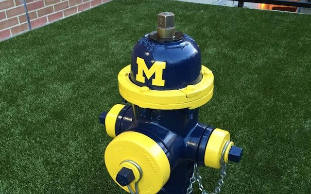 OSU vet school has Michigan fire hydrants for dogs to