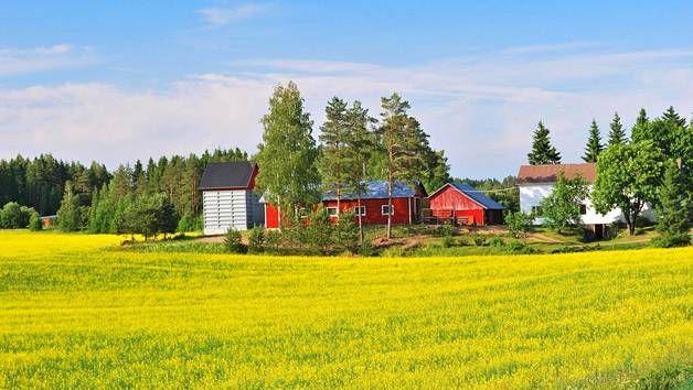 Suomi on yksi turvallisimmista, uusi listaus kertoo.