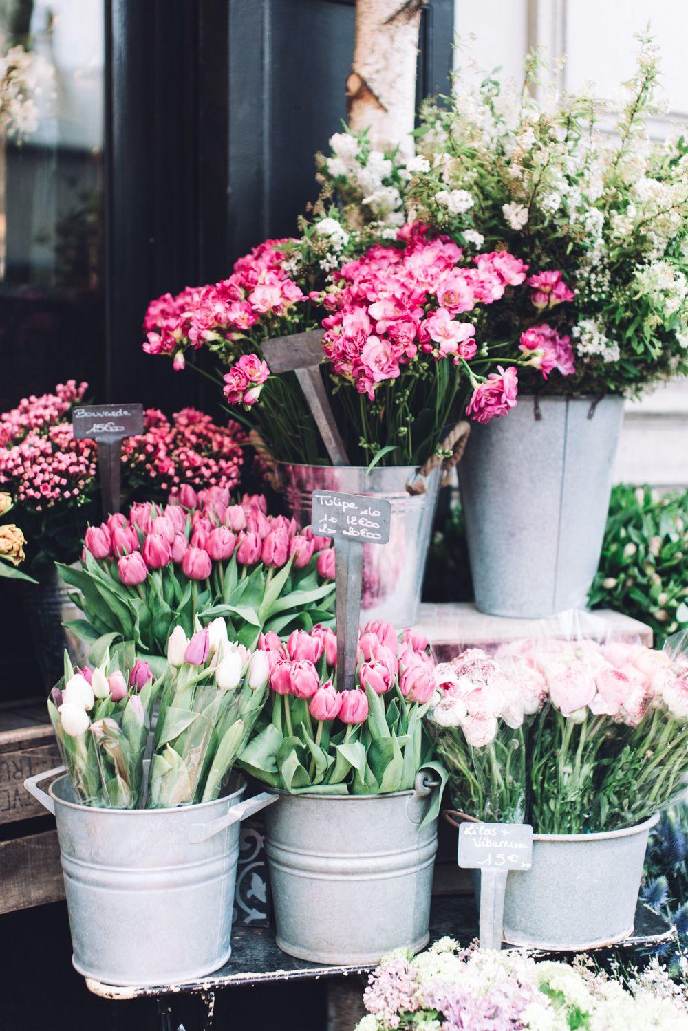8 rue caffarelliris france pinterest simple pleasures flowers simple pleasures no izmirmasajfo Gallery
