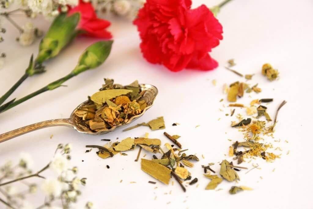 Hot skinny herbal tea skinny teas fit tea detox skinny