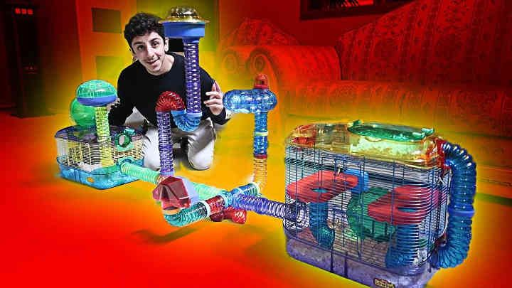 Building My Hamster His Dream Cage Faze Rug Hamster Cage Rugs