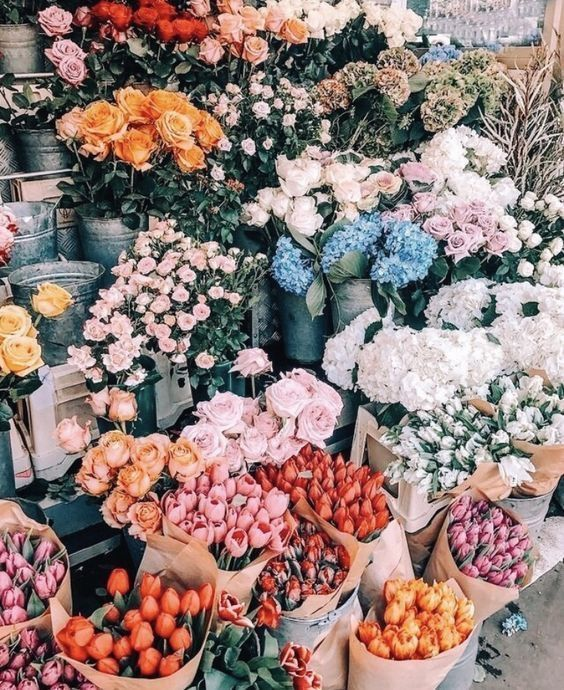 Die Freude von J, Lifestyle Blogger, Fashion Blogger, Floral, Flower Design, Pretty ...   - •nature• - #Blogger #Design #Die #Fashion #Floral #Flower #Freude #Lifestyle #nature #Pretty #von #prettypics