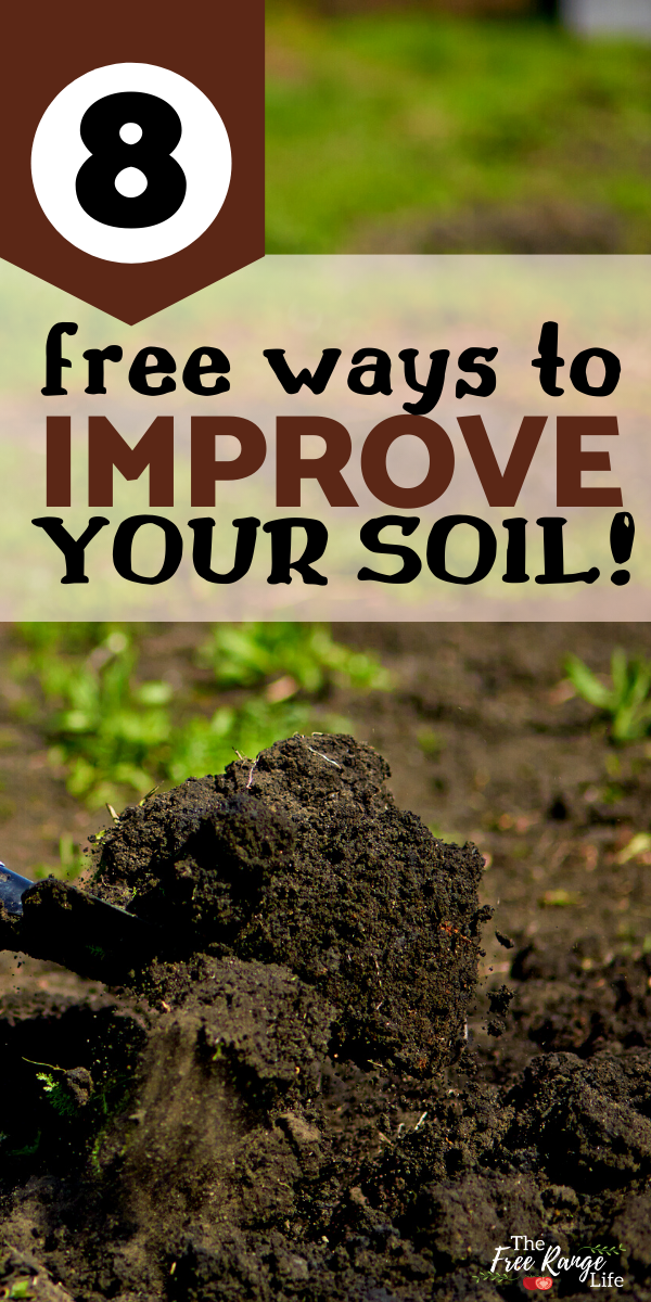8 Ways To Improve Your Garden Soil For Free Healthy Garden Garden Soil Soil Improvement