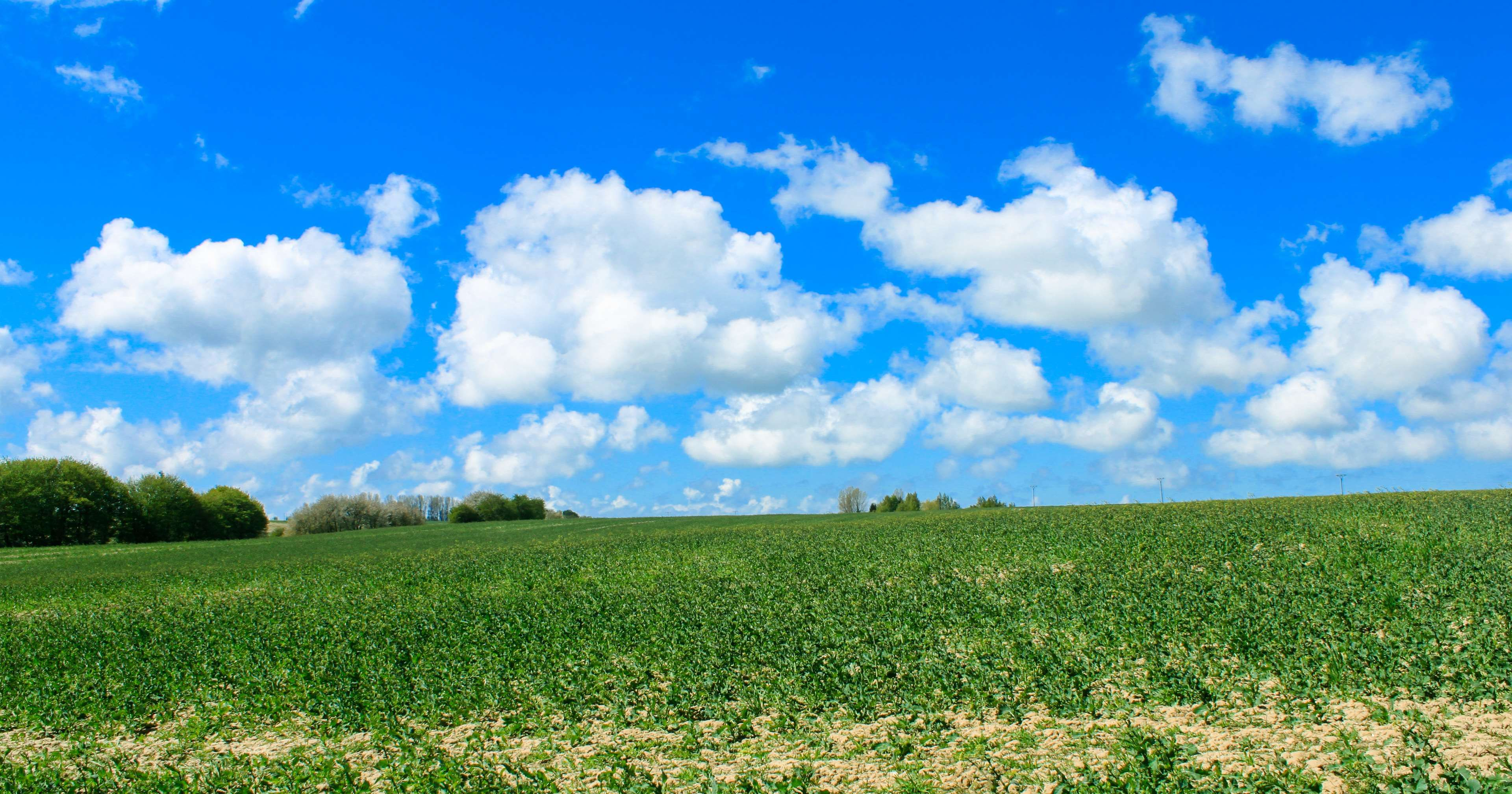 Clouds Farm Field Landscape Nature Sky Spring Trees 4k Wallpaper Landscape Clouds Nature