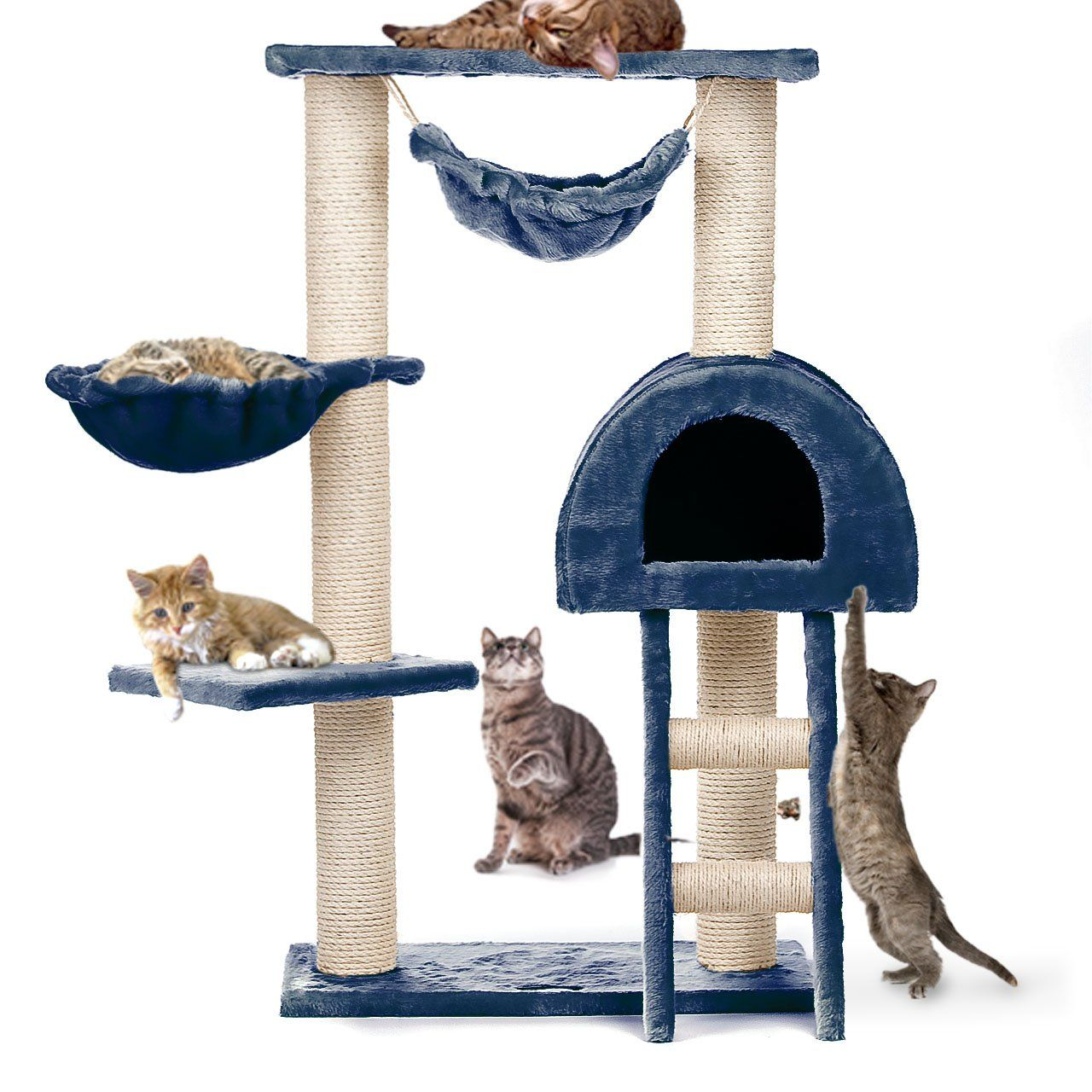 blue cat tree with hammock   uk  poles have sisal ropes for scratching  kitty blue cat tree with hammock   uk  poles have sisal ropes for      rh   pinterest