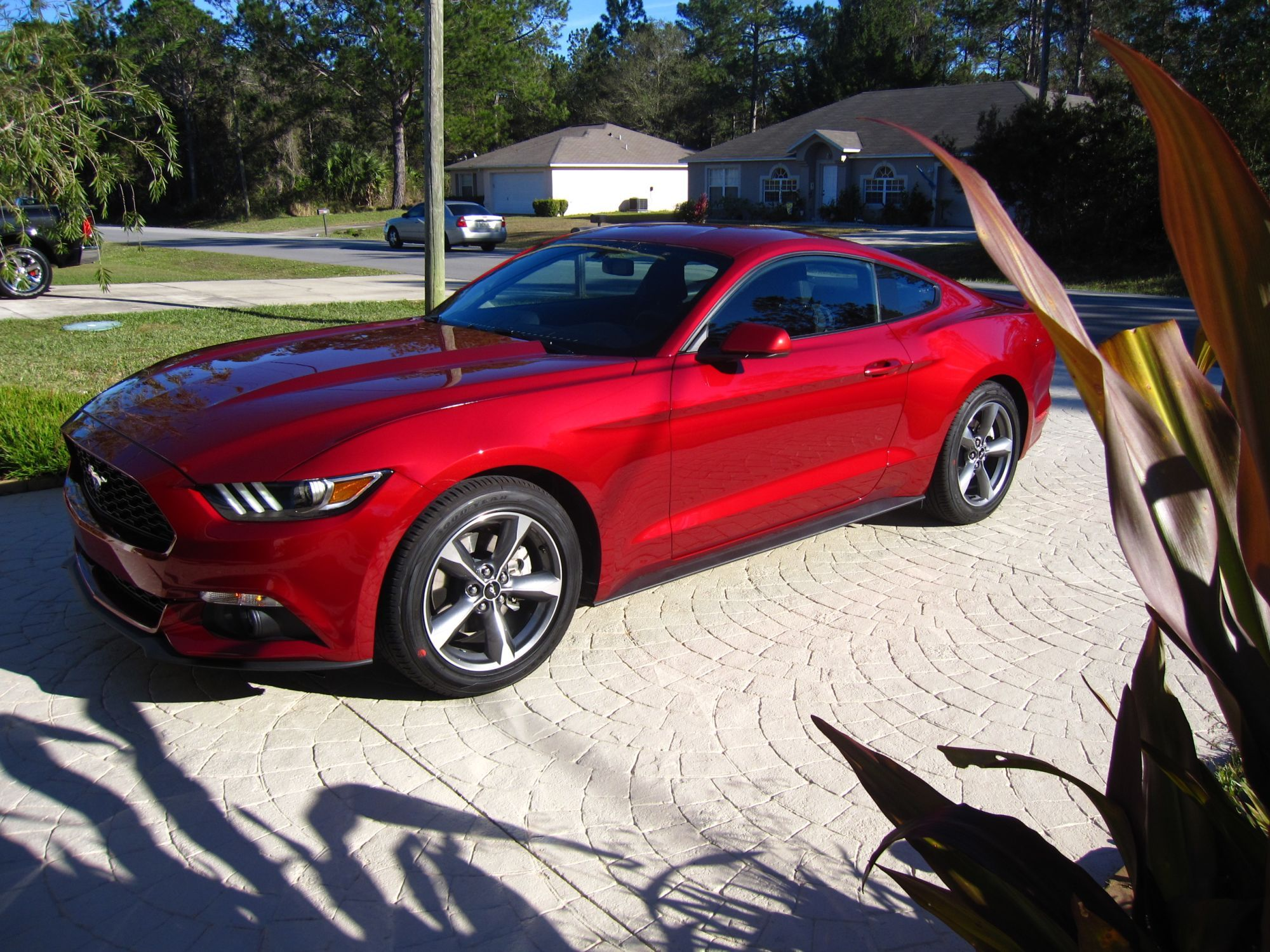Ruby red the mustang source ford mustang forums